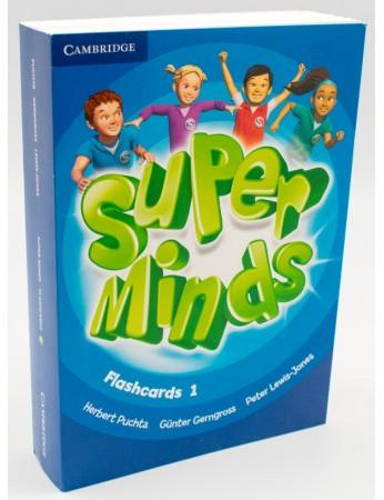 SUPER MINDS Level 1 Flashcards (Pack of 103)